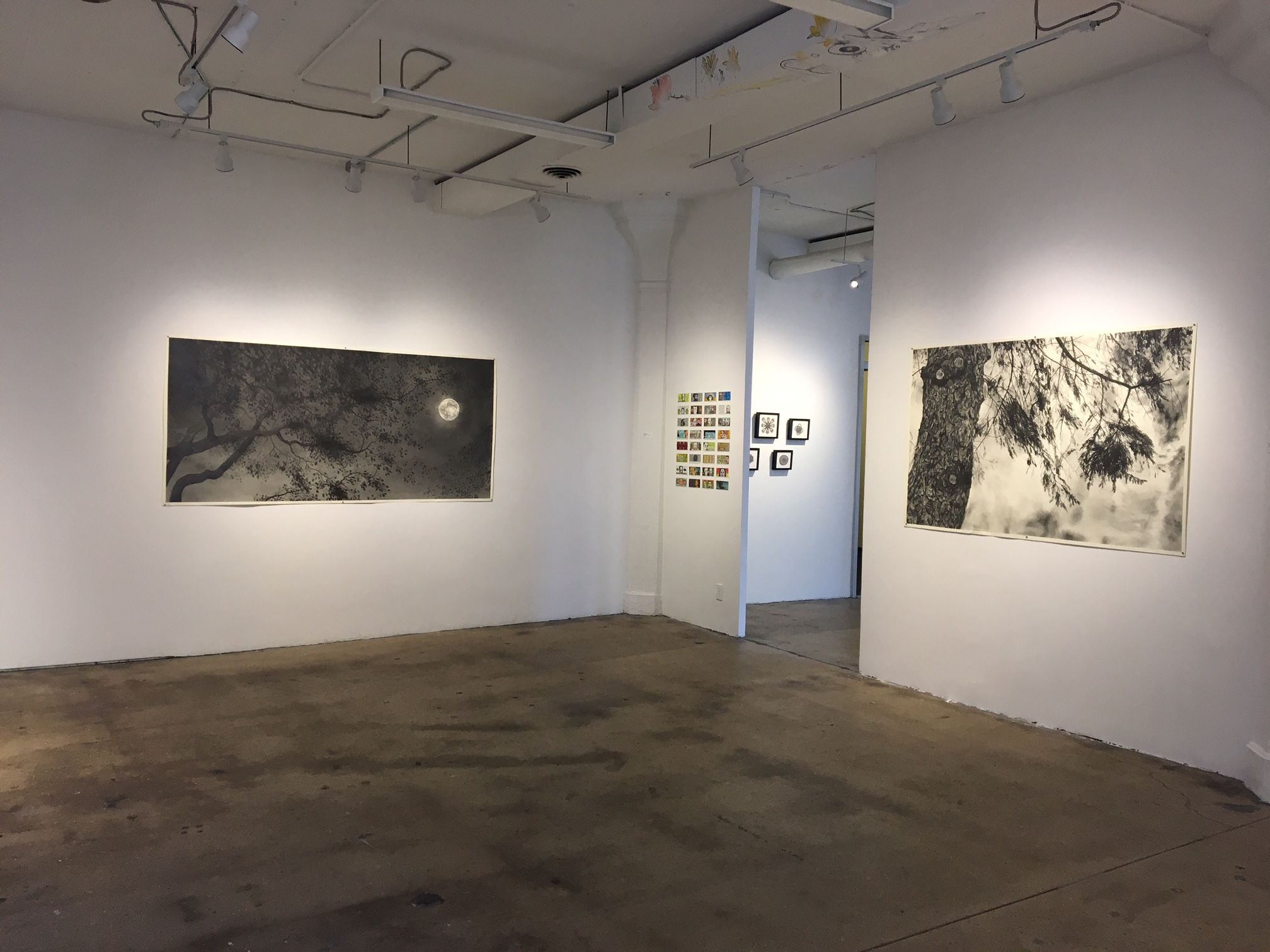 Installation View, Drawn Out